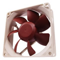 Noctua NF-R8 Quiet Computer Fan 80mm